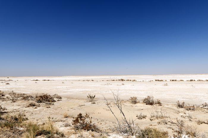Salt flats in Hudspeth County, Texas by Carol Highsmith.