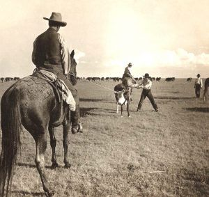 Cowboys at work on the Palo Duro Ranch near Fritch,Texas. in about 1900.