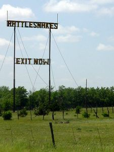 The long-standing exit sign for the old Regal Reptile Ranch was destroyed in 2007 by high winds. Photo from 2004.