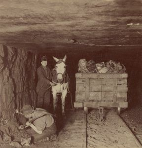 Pennsylvania Coal Miners by Strohmeyer & Wyman, 1895.