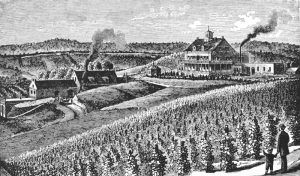 Stone Hill Winery in Hermann, Missouri in 1888.
