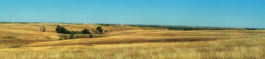 Grass-filled sandhills in Nebraska.