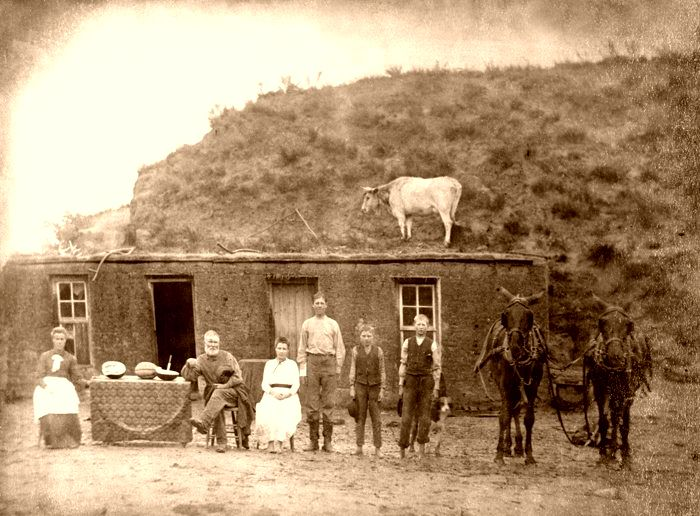 Sod house in Nebraska by Solomon D. Butcher, 1886.