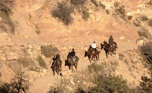 Riders on the Bright Angel Trail, Grand Canyon, Arizona by Carol Highsmith.