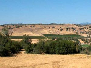Sierra Foothills, California, courtesy Wikipedia.