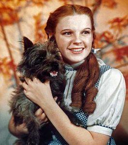 Judy Garland and Toto