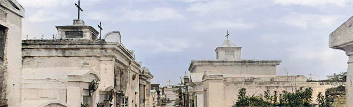 The St. Louis Cemeteries in New Orleans are called the Cities of the Dead.