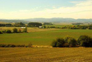 Willamette River Valley, Oregon courtesy Wikipedia.