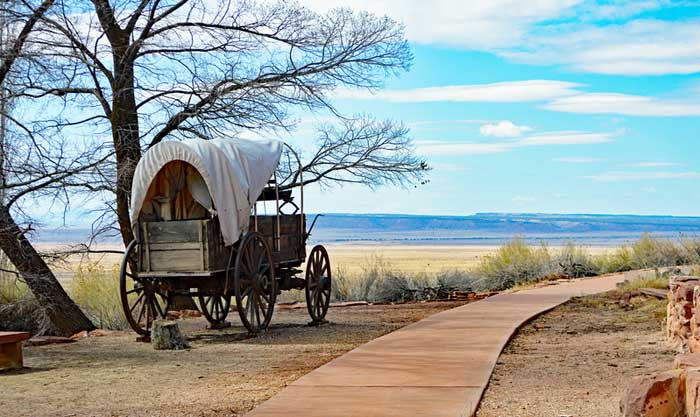 Pipe Spring Wagon